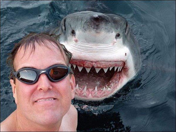 selfie-tiburon